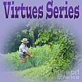 Virtues by Tina M Wenger