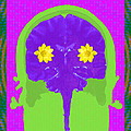 Vision Flowers In The Brain by Paul Franklin Smith