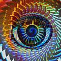Visionary by Gwyn Newcombe
