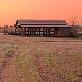 Visiting The Farm by Karen Beasley