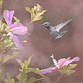 Visitor In The Rose Of Sharon by Angie Vogel