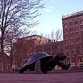 Visitors - Copley Square by Marcello Cicchini