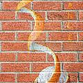 Vitamin C Wall by Semmick Photo
