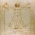Vitruvian Man By Leonardo Da Vinci  by Karon Melillo DeVega