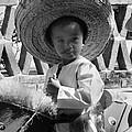 Viva Mexico by Tod Ramey