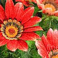 Vivid Orange African Daisy Digital Oil Painting by Beverly Claire Kaiya