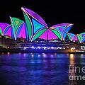 Vivid Sydney By Kaye Menner - Opera House... Patterns 2 by Kaye Menner