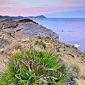 Volcanic Desert At Sunset by Guido Montanes Castillo