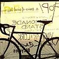 Volker Bicycles by Elizabeth Sullivan