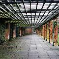 Vortex Walkway by Aaron Evans