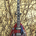 Vox Starstream Vi Guitar 1967 by Phyllis Tarlow