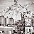Voyces Mill by Sennie Pierson