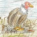 Vulture by Ethan Chaupiz