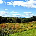Wachusett Mountain From Tower Hill by Michael Saunders