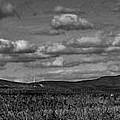 Wachusett Mountain Bw by Michael Saunders
