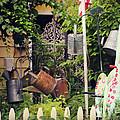 Wacky Watering Can Garden by Beth Ferris Sale