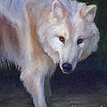 Wading Wolf by Julie Hart