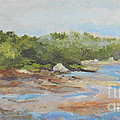 Wadsworth Cove - Elephant Rock by Alicia Drakiotes
