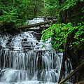 Wagner Falls by Rachel Cohen