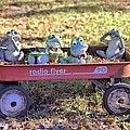 Wagon Full Of Frogs by Gordon Elwell