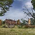 Wagon-hill Country Texas V2 by Douglas Barnard