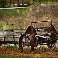 Wagon by Marty Koch
