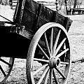 Wagon Wheel by Erin Johnson