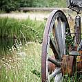 Wagon Wheel In Grass by Athena Mckinzie