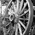 Wagon Wheel - No Where To Go - Bw 01 by Pamela Critchlow