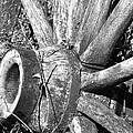 Wagon Wheel - No Where To Go - Bw 03 by Pamela Critchlow