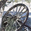 Wagon Wheel by Patricia Quandel