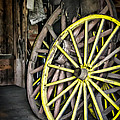 Wagon Wheels by Colleen Kammerer