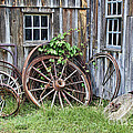 Wagon Wheels In Color by Crystal Nederman