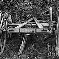 Wagon Wheels by Joseph Marquis