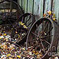 Wagon Wheels by Scott Hervieux
