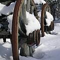 Wagons West by Jennifer Lake