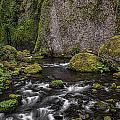 Wahclella Falls by Erika Fawcett