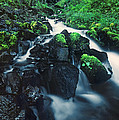 Wahkeenah Falls Columbia River Gorge Nsa Oregon by Dave Welling