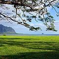 Waiahole Oahu Hawaii by Kevin Smith