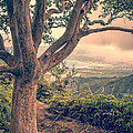 Waihee Ridge Trail Maui Hawaii by Edward Fielding