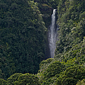 Wailua Stream Waiokane Falls View From Wailua Maui Hawaii by Sharon Mau