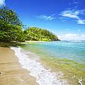 Waikoko Beach Shore by Kicka Witte - Printscapes