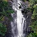 Wailua Falls by Harold Rau