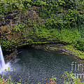Wailua Falls by Richard Lynch