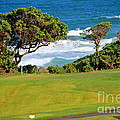 Wailua Golf Course - Hole 17 - 2 by Mary Deal