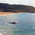 Waimea Bay Sunset by Kevin Smith