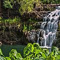 Waimea Falls by Dan McManus