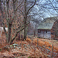 Waiting For Winter by Jeff Folger