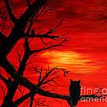 Waiting On Sundown by Barbara Griffin
