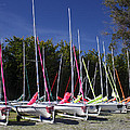 Waiting To Sail On Lake Taupo by Venetia Featherstone-Witty